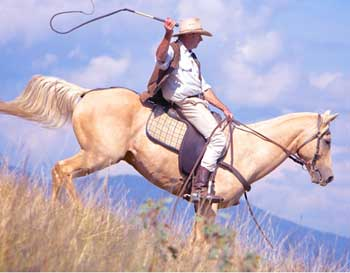 Man Riding Horse - A Good Short Story For Teenagers