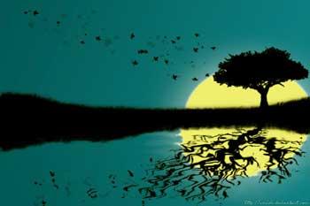 Spiritual Enlightenment Stories - Material Life vs Spiritual Life
