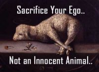 Superstition Story - Wise King Clever Thinking to Stop Animal Sacrifice