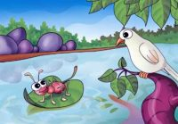 Kids Moral Stories - Ant and Dove short Story