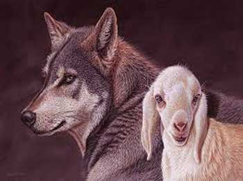 Wolf and Lamb Story - Short Classic Moral Stories for Kids on Cleverness